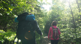 Hiking - suggestions from our passionates